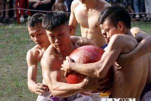 Trai làng nô nức tham dự Lễ hội vật cầu truyền thống đình Thúy Lĩnh
