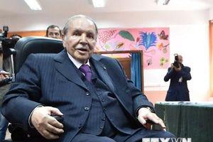 Algeria: Tổng thống Bouteflika tranh cử nhiệm kỳ thứ 5 liên tiếp
