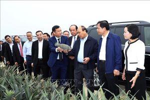 Thủ tướng yêu cầu áp dụng mạnh mẽ khoa học và công nghệ vào sản xuất nông nghiệp