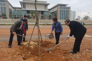Quảng Bình: Để 'Tết trồng cây' trở thành nét đẹp truyền thống của người Việt