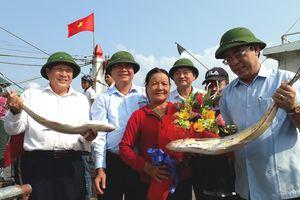 Ngư dân Quảng Trị trúng mẻ cá bè vàng gần 8 tỷ đồng