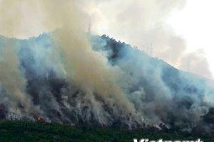 Khẩn cấp ứng phó với tình trạng cháy rừng trong mùa cao điểm