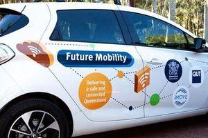 Thử nghiệm thiết bị cảm biến AI trong xe hơi tại Australia