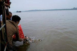 Hà Nội: Kiểm soát chặt chẽ buôn bán, tiêu thụ động vật hoang dã và phóng sinh các loài ngoại lai xâm hại