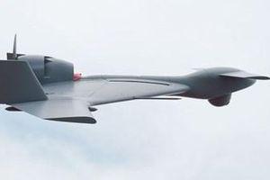 Ấn Độ đặt mua 54 UCAV Harop trang bị cho không quân