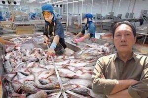 Vua cá tra Dương Ngọc Minh: Doanh thu nghìn tỷ, nhận thù lao 0 đồng