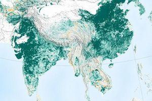NASA: Trung Quốc và Ấn Độ đang giúp Trái đất xanh hơn