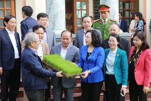 Kiểm tra sản xuất vụ xuân và tiến độ thực hiện Chương trình 02 tại huyện Phú Xuyên