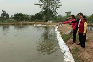 Ninh Bình: Nhà nông được tiếp vốn thả cá, nuôi vịt trời