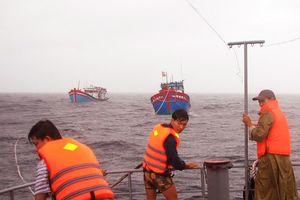 Xuyên bão biển cứu dân