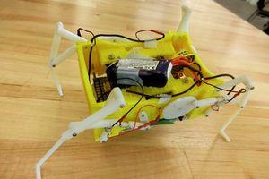 Độc lạ robot tự làm 'tan chảy' chân để thay đổi cách di chuyển
