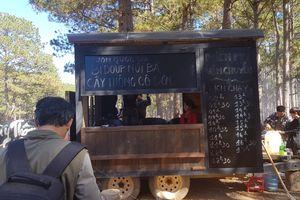 Tạm dừng việc bán vé tham quan 'cây thông cô đơn' ở Đà Lạt