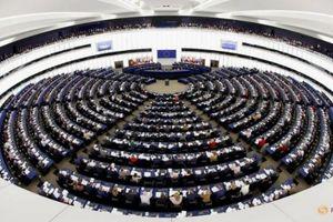 EU lập cơ chế kiểm tra đầu tư nước ngoài, ám chỉ Trung Quốc