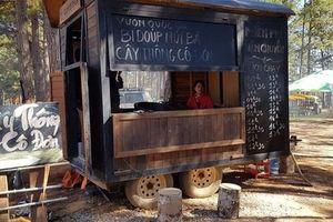 Lâm Đồng yêu cầu dừng bán vé vào tham quan cây thông 'cô đơn'