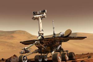 Không phải Wall-E, đây mới là chú robot phi thường nhất của nhân loại