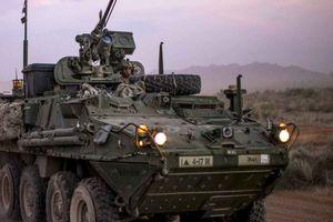 Mỹ phái 'sát thủ' bọc thép Stryker tới châu Âu đối phó Nga