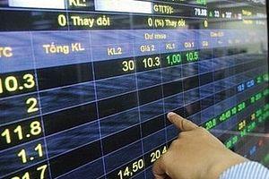 Chứng khoán tuần 11/2-15/2: Đa phần các nhóm cổ phiếu đều tăng điểm