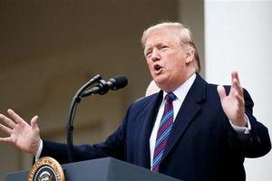 AP: Tổng thống Mỹ Donald Trump được đề cử giải Nobel Hòa bình
