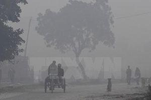 Ấn Độ sẽ đầu tư 12 tỷ USD cho các sáng kiến cắt giảm ô nhiễm