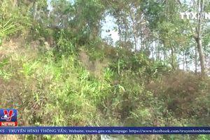 Điện Biên nỗ lực điều tra vụ nữ sinh giao gà bị sát hại chiều 30 Tết