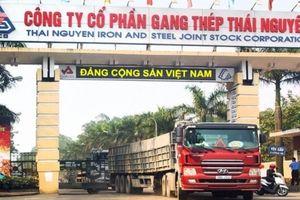 Lùm xùm sai phạm, ''soi'' tình hình kinh doanh của Gang thép Thái Nguyên