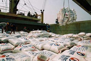 Thị trường xuất khẩu gạo năm 2019: Cạnh tranh khốc liệt