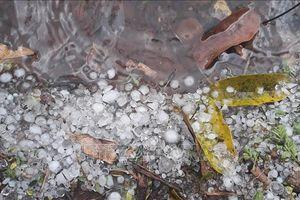 Mưa đá, gió lốc xảy ra trên diện rộng tại Lào Cai, Lai Châu, Điện Biên