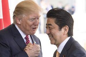 Thủ tướng Abe nói gì sau thông tin đề cử ông Trump giải Nobel Hòa bình?