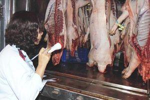 Thịt không rõ nguồn gốc xuất xứ, hết hạn tràn lan tại các kho bảo quản