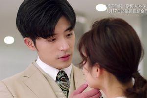 Phim truyền hình hiện đại Hoa ngữ đầu năm 2019: Nhắc đến sủng vợ, sao lại quên hai vị soái ca này?