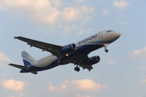 Hãng hàng không giá rẻ IndiGo hủy nhiều chuyến bay vì thiếu phi công trầm trọng