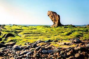Yêu cầu báo cáo trách nhiệm vụ bãi đá 7 màu bị xâm hại