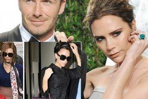 Vợ Beckham bị phản ứng vì kho túi làm từ da 130 con cá sấu