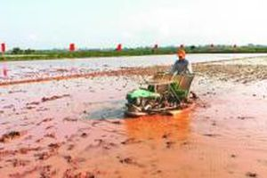 Huyện Phú Xuyên phấn đấu sớm về đích nông thôn mới