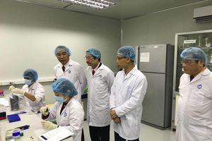 Virus dịch tả lợn châu Phi ở Việt Nam tương đồng virus ở Trung Quốc