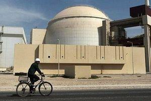 Nhà máy điện hạt nhân Bushehr của Iran tạm dừng hoạt động từ 1/3