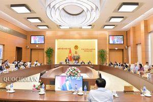 Tiếp tục rà soát, hoàn thiện Dự thảo Luật Quản lý thuế (sửa đổi)