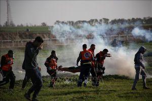 Tương lai u ám cho nền hòa bình bền vững tại Gaza và Bờ Tây