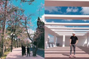 Toàn cảnh 'đẹp như tranh' ở Đại học Đà Lạt khiến dân tình thích thú
