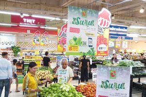 Big C sẽ tiêu thụ 30 tấn su su Hoàng Mai, tỉnh Nghệ An có truy xuất nguồn gốc