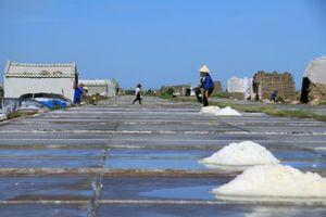 Cần có giải pháp tiêu thụ đảm bảo ổn định cho ngành muối