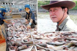 Vua cá tra Dương Ngọc Minh sẽ rời Hùng Vương?