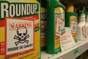Monsanto lại bị kiện vì gây ô nhiễm PCB