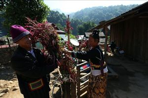 Điện Biên có thêm 2 di sản văn hóa phi vật thể quốc gia
