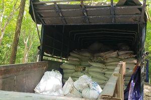 Bình Dương: Bắt xe tải đổ trộm khoảng 100 tấn bùn thải trong vườn cao su