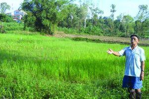Sông Hinh (Phú Yên): Liệu có khuất tất trong 'Dự án bỏ túi'?