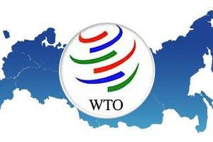 EU vẫn coi WTO là ưu tiên để thúc đẩy thương mại