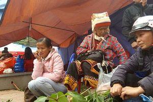 La liệt 'thần dược' trên núi cao được người Dao Mẫu Sơn mang bày bán