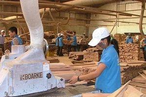 Đang có sự mất cân đối giữa các doanh nghiệp ngành gỗ