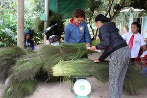 'Lộc' rừng đầu năm tại Quảng Bình